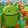 Google's next version of Android will be called JellyBean